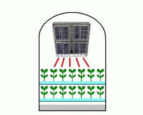 第6號 光源為促進植物工廠的發芽和成長
