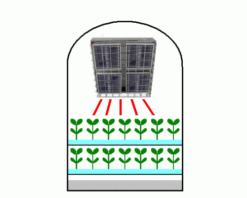 Growth and the light source for promoting germination of a plant factory by the Infrared Panel Heater