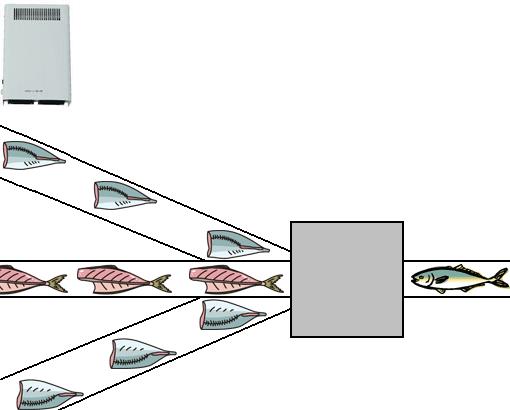 오존 형 살균 탈취제 장치에 의한 제 11 호 물고기 가공 장내 살균 탈취