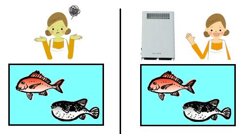 오존 형 살균 탈취제 장치에 의한 제 26 호 생책의 생선 냄새 탈취