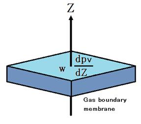 Gas boundary membrane