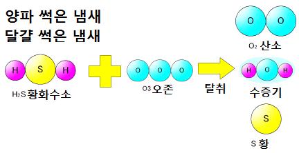 오존의 3 가지 힘 - 탈취력