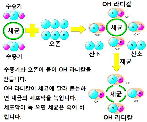 오존의 3 가지 힘 - 살균력