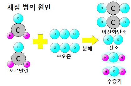 오존의 3 가지 힘 - 분해력